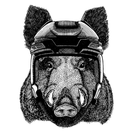 Aper, boar, hog, wild boar, animal wearing hockey helmet. Hand drawn image of lion for tattoo, t-shirt, emblem, badge, logo, patch.