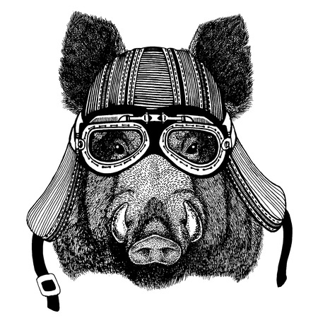 Wild aper, boar, hog, biker animal wearing motorcycle helmet. Hand drawn image for tattoo, emblem, badge, logo, patch, t-shirt.