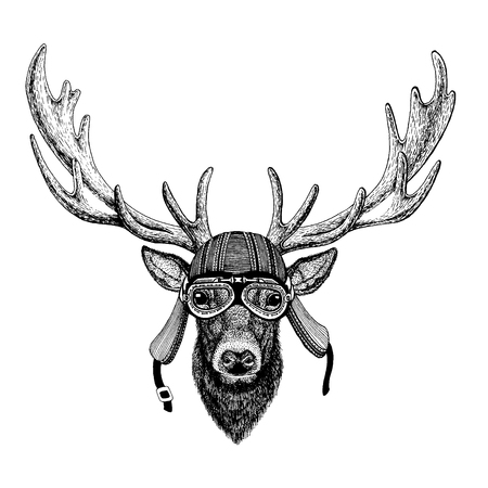 Deer wild biker animal wearing motorcycle helmet. Hand drawn image for tattoo, emblem, badge, logo, patch, t-shirt.