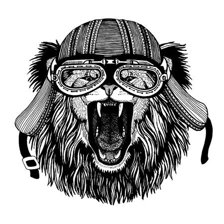Wild lion biker animal wearing motorcycle helmet. Hand drawn image for tattoo, emblem, badge, logo, patch, t-shirt.