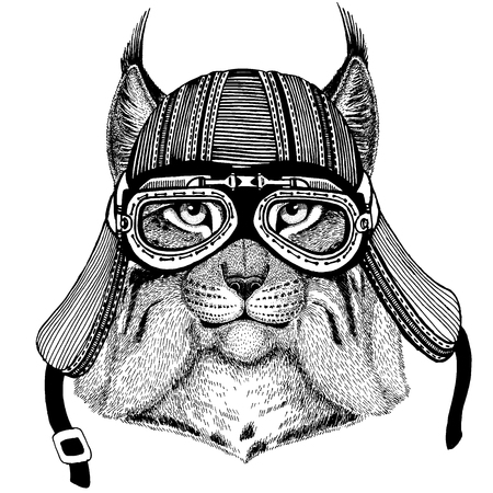 Wild cat, lynx, bobcat, trot wild biker animal wearing motorcycle helmet. Hand drawn image for tattoo, emblem, badge, logo, patch, t-shirt. Archivio Fotografico - 120708444
