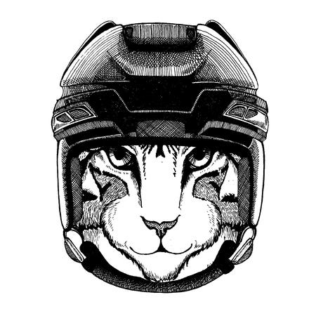 Domestic cat, animal wearing hockey helmet. Hand drawn image of lion for tattoo, t-shirt, emblem, badge, logo, patch.