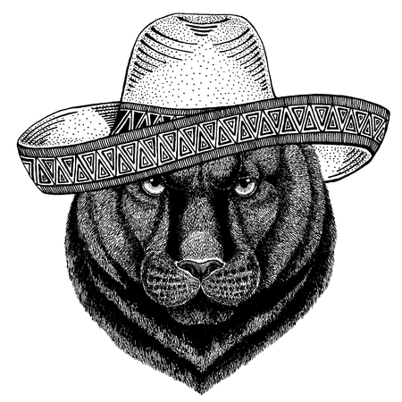 Panther Puma Cougar Wild cat wearing traditional mexican hat. Classic headdress, fiesta, party. Stock Illustratie