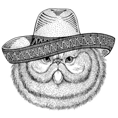 Gato con sombrero tradicional mexicano. Tocado clásico, fiesta, fiesta. Ilustración de vector