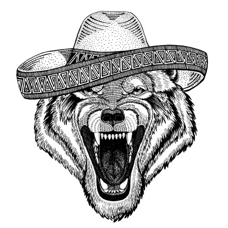 Wolf, dog wearing traditional mexican hat. Classic headdress, fiesta, party.