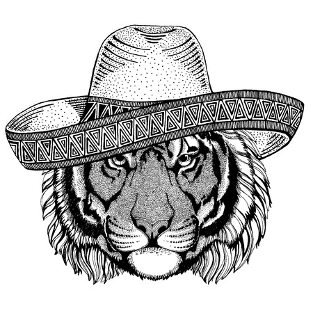 Tiger wearing traditional mexican hat. Classic headdress, fiesta, party.