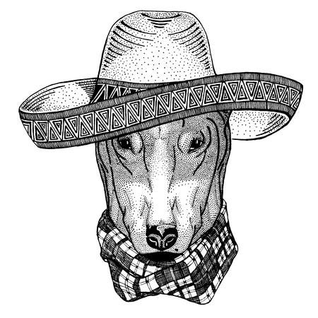 Dog wearing traditional mexican hat. Classic headdress, fiesta, party.