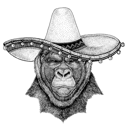 Gorilla, monkey, ape wearing traditional mexican hat Sombrero. Classic headdress, fiesta, party.