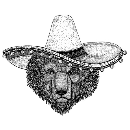 Bear wearing traditional mexican hat. Classic headdress, fiesta, party.