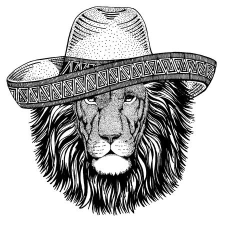 Lion wearing traditional mexican hat. Classic headdress, fiesta, party.