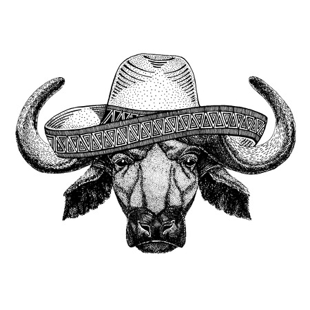 Buffalo, bull, ox wearing traditional mexican hat. Classic headdress, fiesta, party. 向量圖像