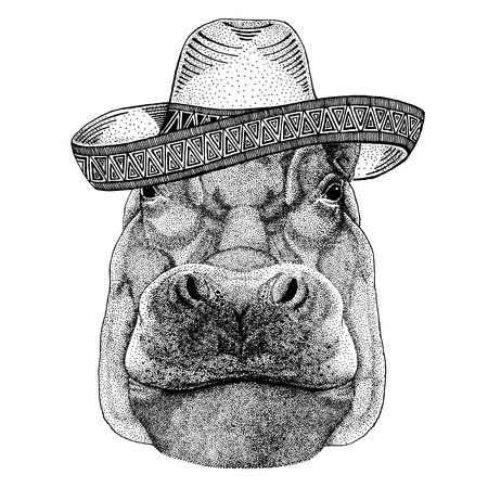 Hippo, Hippopotamus, behemoth, river-horse wearing traditional mexican hat. Classic headdress, fiesta, party. Vectores