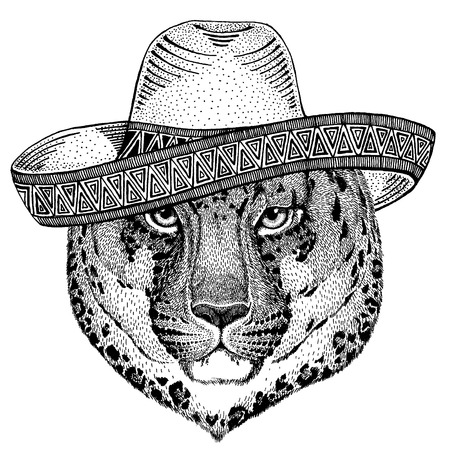 wearing traditional mexican hat. Classic headdress, fiesta, party. Illustration
