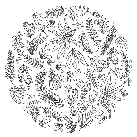 Hand vector drawn floral, leaves elements. Pattern for logo, greeting card, wedding design Logo