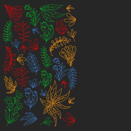Hand vector drawn floral, leaves elements.