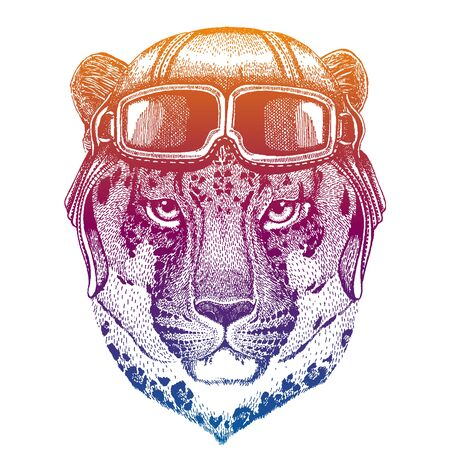 Animal wearing vintage aviator leather helmet. Image in retro style. Flying, motorcycle biker club emblem. Vector illustration, print for tee shirt, emblem, badge logo patch 向量圖像