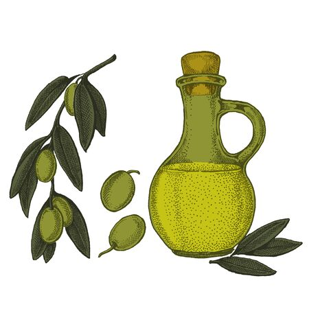 Cosmetic with olive oil and organic farm healthy food. Иллюстрация