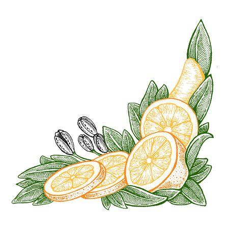 Wedding invitation template, egology concept, vegan food, cafe, restaurant, illustration for orange juice package Фото со стока - 131245868