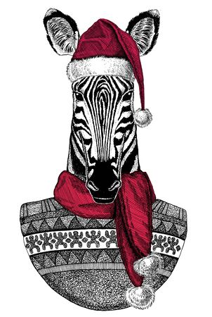 Portrait of zebra wearing Chrismtas Santa Claus hat Foto de archivo - 132114734
