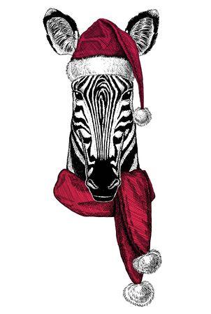 Portrait of wild animal wearing Chrismtas Santa Claus hat Foto de archivo - 132114738