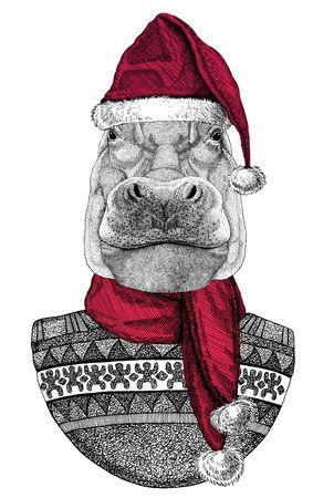 Portrait of Hippopotamus wearing Chrismtas Santa Claus hat Foto de archivo - 132114742