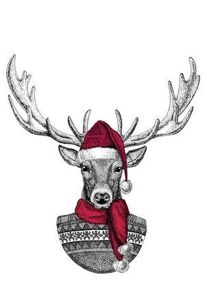 Portrait of wild deer wearing Chrismtas Santa Claus hat Foto de archivo - 132114569