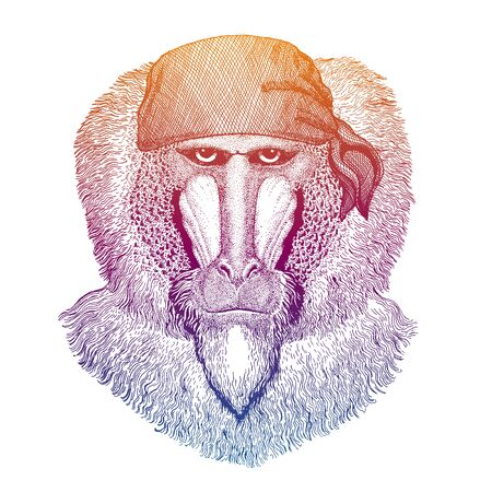Monkey, baboon, ape. Wild pirate or biker. Vector animal portrait. Sailor, motorcyclist. Print for children clothing, tee. Kids fashion.