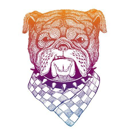 Vector illustration head ferocious bulldog mascot.