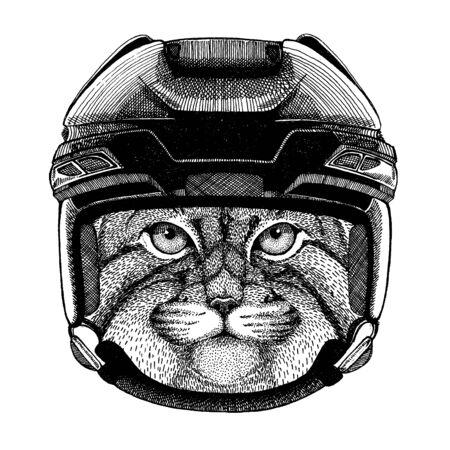 Manul, cat animal wearing hockey helmet. Hand drawn image of lion for tattoo, t-shirt, emblem, badge, logo, patch.