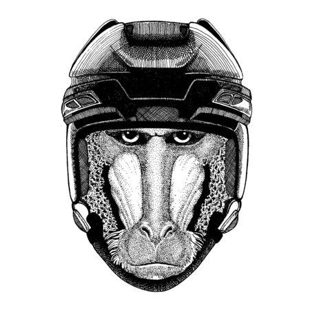 Monkey, baboon, dog-ape, ape animal wearing hockey helmet. Hand drawn image of lion for tattoo, t-shirt, emblem, badge, logo, patch.