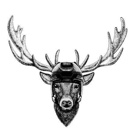 Deer, animal wearing hockey helmet. Hand drawn image of lion for tattoo, t-shirt, emblem, badge, logo, patch. 向量圖像