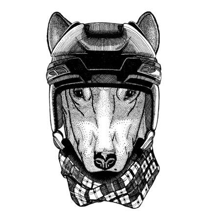 Dog, animal wearing hockey helmet. Hand drawn image of lion for tattoo, t-shirt, emblem, badge, logo, patch.