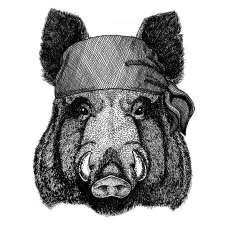 Aper, cinghiale, maiale, cinghiale. Animale selvatico che indossa bandana pirata. Marinaio coraggioso. Immagine disegnata a mano per tatuaggio, emblema, distintivo, logo, patch