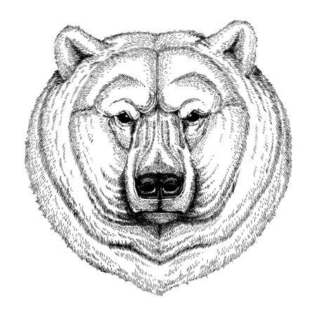 Polar bear. Wild animal for tattoo, nursery poster, children tee, clothing, posters, emblem, badge, logo, patch  イラスト・ベクター素材