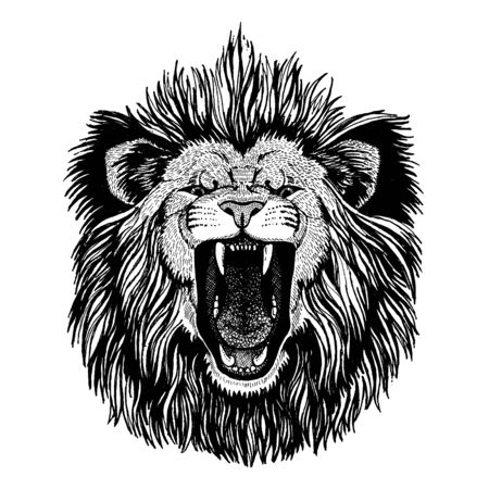 Lion. Wild animal for tattoo, nursery poster, children tee, clothing, posters, emblem, badge, logo, patch