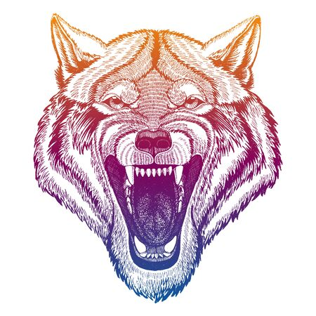 Wild wolf. Animal head. Portrait of dangerours beast. Hunter face. Realistic vector illustration.