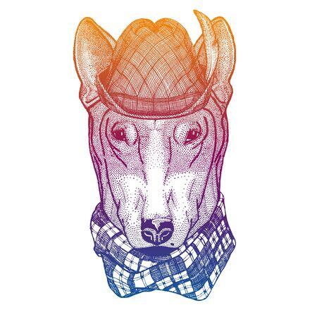 Vector dog, bullterrier. Bavarian traditional hat. Tirol austrian hat. Beer oktoberfest animal portrait.