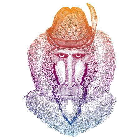 Vector monkey, baboon. Bavarian traditional hat. Tirol austrian hat. Beer Oktoberfest character portrait.