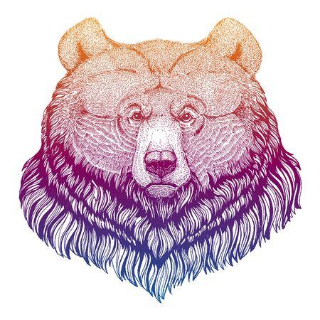 Grizzly bear. Big wild animal portrait. Hand drawn image for tattoo, t-shirt, emblem, badge, patch. Zdjęcie Seryjne - 140167809