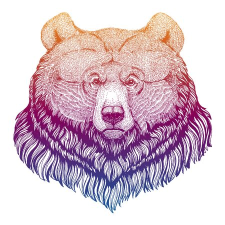 Grizzly bear. Big wild animal portrait. Hand drawn image for tattoo, t-shirt, emblem, badge, patch.