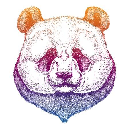 Panda, bamboo bear. Big wild animal portrait. Hand drawn image for tattoo, t-shirt, emblem, badge, patch. Ilustracja