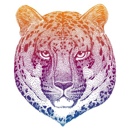 Leopard. Powerful animal isolated on white background. Cartoon portait of wild cat. Cute monster and predator for tattoo, poster, print. Cool vector design illustration. Zdjęcie Seryjne - 140167847