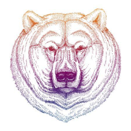 Big polar bear. Hand drawn animal portrait for tattoo, t-shirt, emblem, badge, patch Zdjęcie Seryjne - 140167848