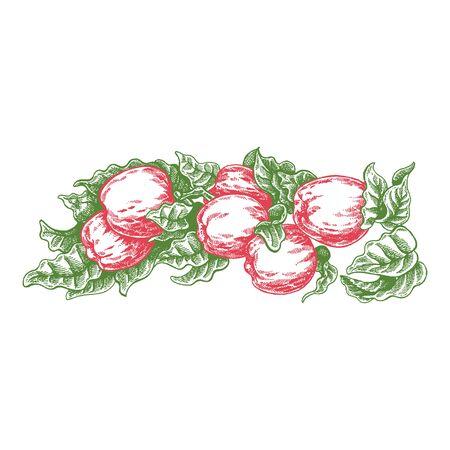 Wedding invitation template, egology concept, vegan food, cafe, restaurant, illustration for apple juice package
