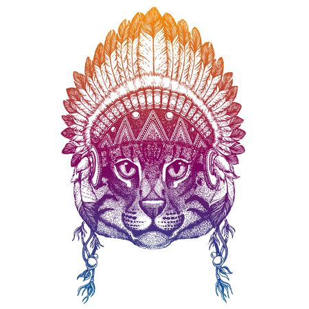 Fishing cat. Animal. Vector portrait in traditional indian headdress with feathers. Tribal style illustration for little children clothes. Image for kids tee fashion, posters. Ilustrace