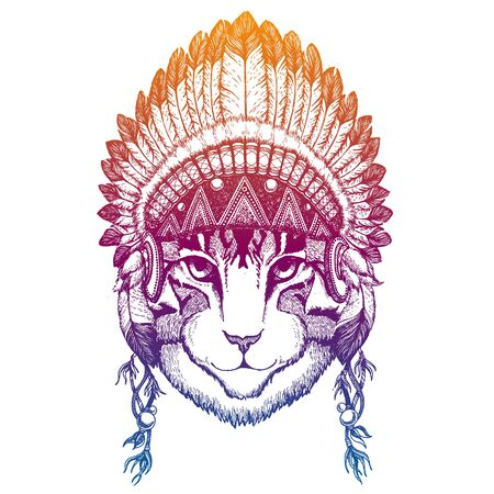 Cat. Domestic. Animal. Vector portrait in traditional indian headdress with feathers. Tribal style illustration for little children clothes. Image for kids tee fashion, posters.