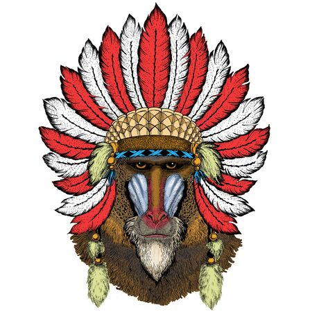 Baboon, monkey, ape. Head, portrait of animal. Indian headdress with feathers. Boho style.