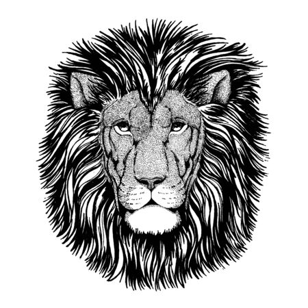 Lion. Wild animal for tattoo, nursery poster, children tee, clothing, posters, emblem, badge, patch