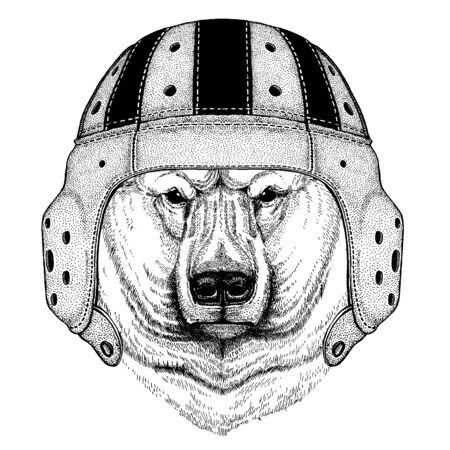 Polar bear. Portrait of animal wearing rugby helmet