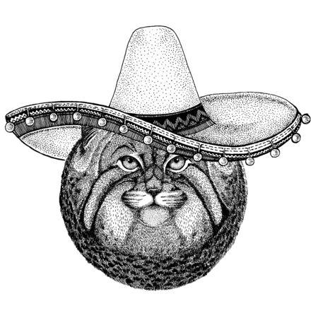 Mexican sombrero. National hat. Cinco de mayo. Day of the dead.